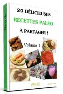 Livre gratuit : 20 délicieuses recettes Paléo à partager – volume1