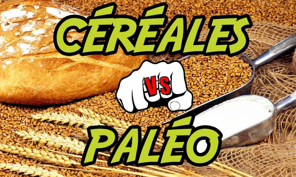 régime paléo recettes : les céréales paléo