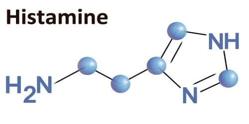 histamine molécule