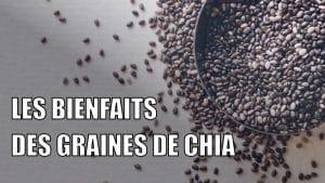 Les bienfaits des graines de chia
