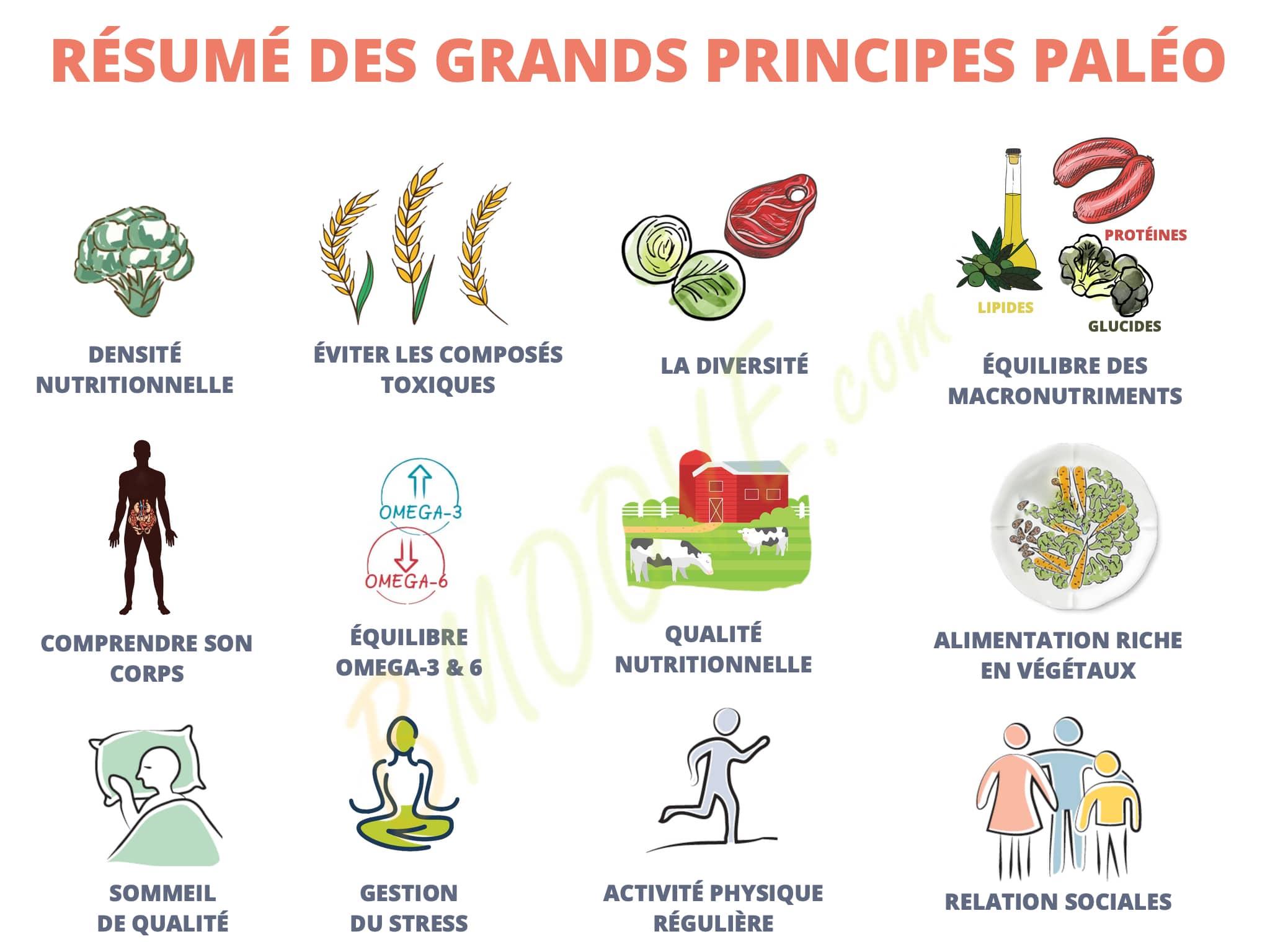 GRANDS PRINCIPES PALÉO