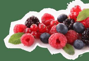 régime paléo liste aliments