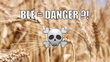Pourquoi le blé est mauvais pour la santé