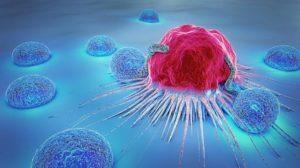 gingembre et cancer