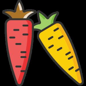 Les aliments autorisés dans le Régime Paléo