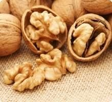 Les noix : source de protéines végétales