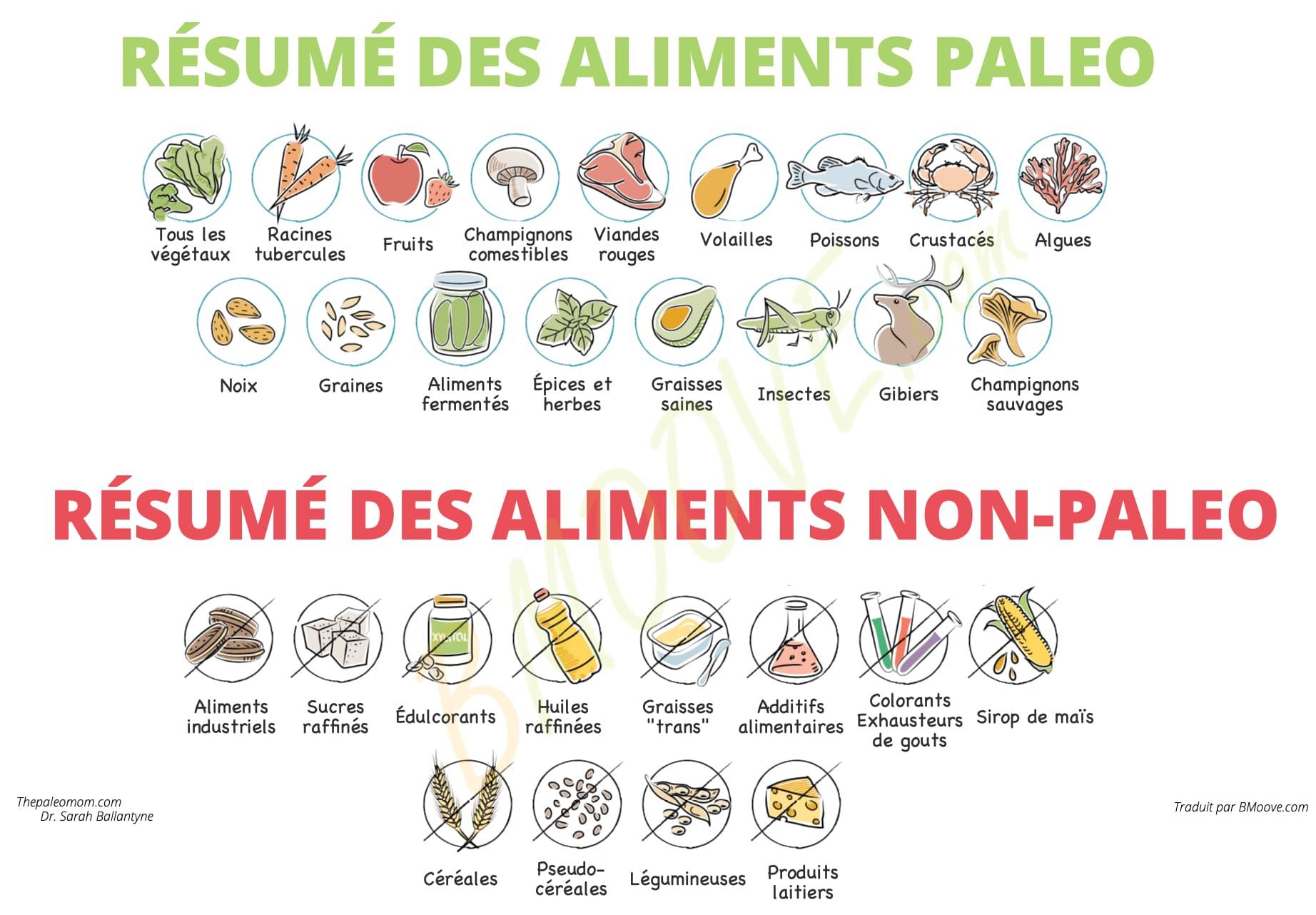 résumé des aliments non-paléo et paléo